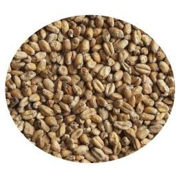 "Солод ""Пшеничный"" (Курский солод), молотый,1 кг"